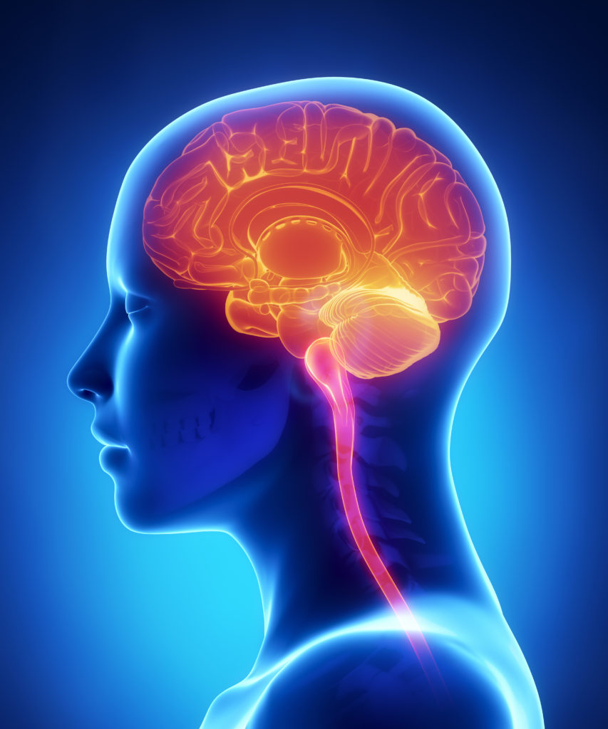 THE PITUITARY GLAND AND PH - pH FocusedpH Focused